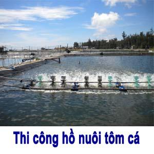 Thi-cong-ho-nuoi-tom