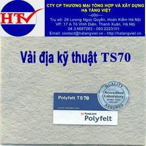 Vải địa kỹ thuật TS70